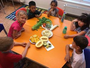Projekt Zdravá výživa