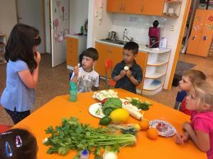 30.5.2017 - Projekt Zdravá výživa